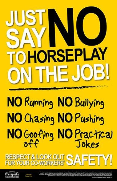 No Horseplay Sign Lakeland Commercial Roofing Specialist